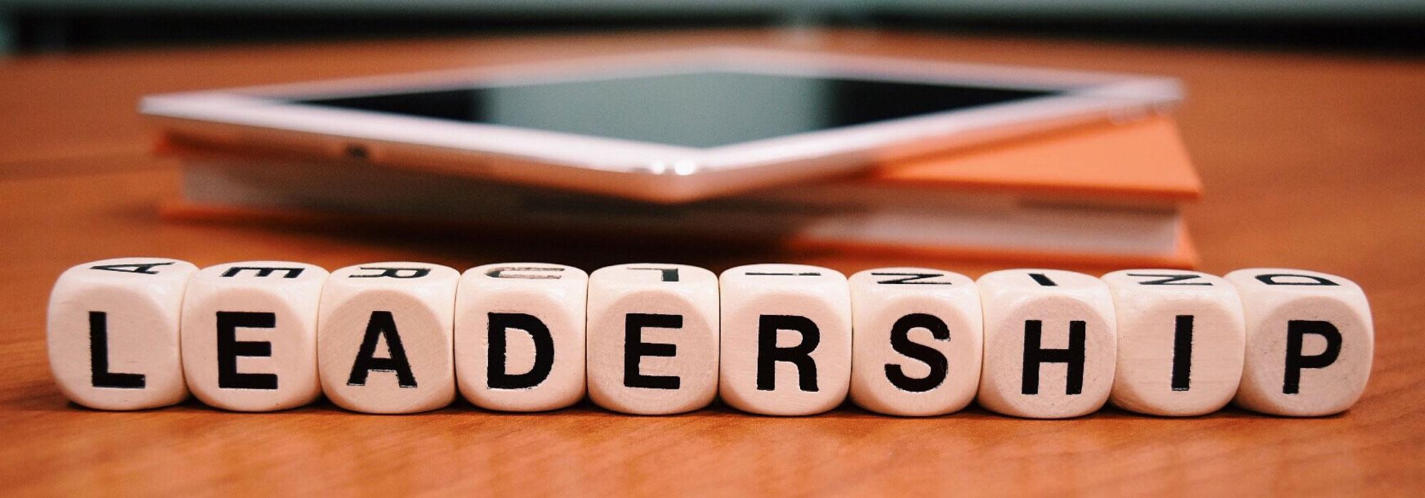 """Terninger danner ordet """"leadership"""""""